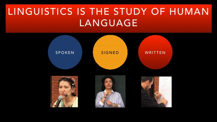 Click on this image to see a short video presentation on Linguistics