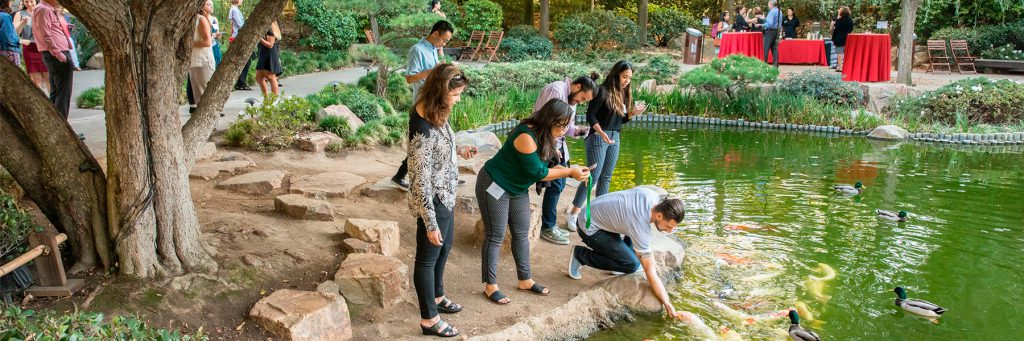 Students feeding koi in the CSULB Japanese Garden